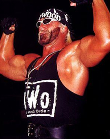 hollywood_hulk_hogan.jpg